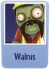 Walrus e.png