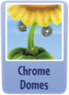 Chrome domes sf.PNG