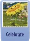 Celebrate sf.png