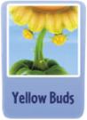 Yellow buds sf.PNG
