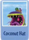 Coconut hat ch.PNG