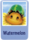 Watermelon sf.png