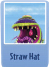 Straw hat ch.PNG
