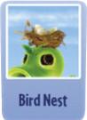 Bird nest.png