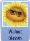 Walnut glasses sf.PNG