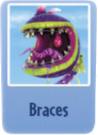 Braces ch.PNG