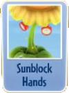 SunblockHands.png