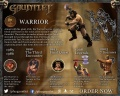 Warrior Infographic 2.jpg