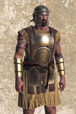 Recruit's Heavy Armour[Heavy Armour]