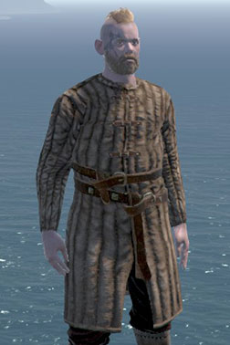Man-at-arms Gambeson