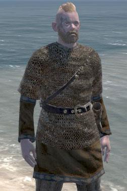 Huskarl's Chainmail [Medium Armour]