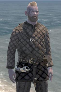 Raider's Gambeson [Light Armour]