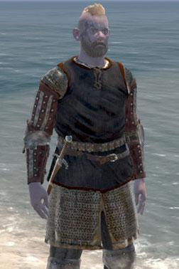 Shieldman's Brigandine [Heavy Armour]