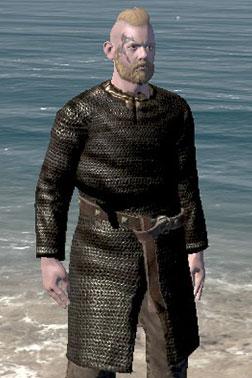 Mercenary's Chainmail [Medium Armour]
