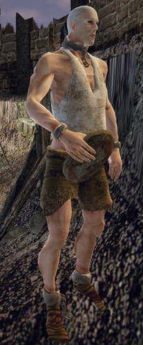 Bengerd (Gothic 3) (by Gothicfan94).png