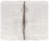Izabel Journal 01 (Anaconda Island).png