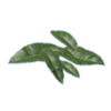 Tobacco Leaf.png