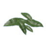 Tobacco Leaf.png
