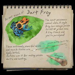 PoisonDartFrognotebook.jpg
