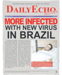 Newspaper Article - Daily Echo (vision 3).png