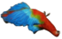 Dead Macaw.png