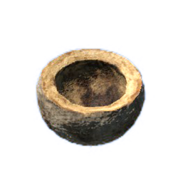 Brazilian nut shell.png