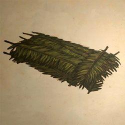 Leaf Bed.jpg