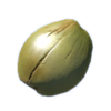 Green coconut.png