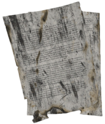 Burned Notes (Abandoned Village).png