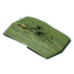 Tabaco dressing.png