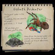 Goliathnotebook.jpg
