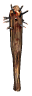 Crude Mace Icon.png