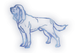 Hound Constellation Icon.png