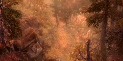 Pine Barrens Icon.png