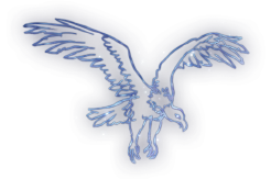 Vulture Constellation Icon.png