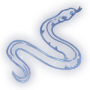 Viper Constellation Icon.png