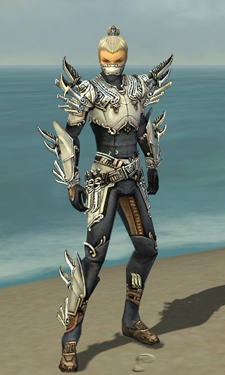 Assassin Asuran Armor M dyed front.jpg