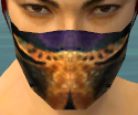 Assassin Elite Exotic Armor M dyed head front.jpg