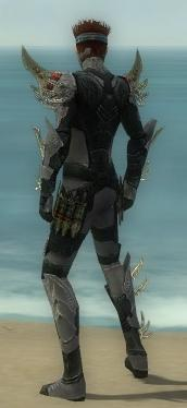 Assassin Elite Imperial Armor M gray back.jpg