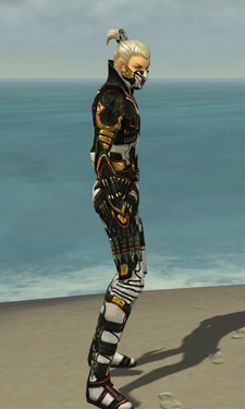Assassin Elite Kurzick Armor M dyed side.jpg
