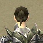 Warrior Templar Armor F gray back clipping issue.jpg