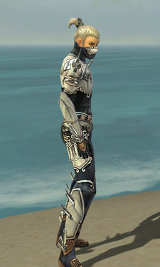 Assassin Asuran Armor M dyed side.jpg