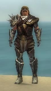 Warrior Deldrimor Armor M gray front.jpg