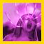 Power Leech.jpg