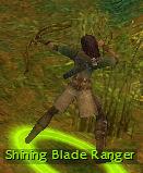 Shining Blade Ranger.jpg