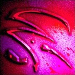 Hi-res-Signet of Twilight.jpg