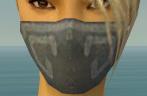 Assassin Shing Jea Armor F gray head front.jpg