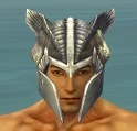 Warrior Templar Armor M gray head front.jpg