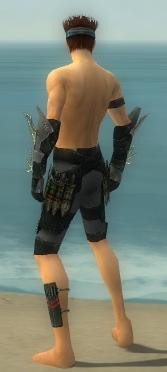 Assassin Elite Imperial Armor M gray arms legs back.jpg