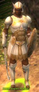 Sodan Expert Warrior.jpg